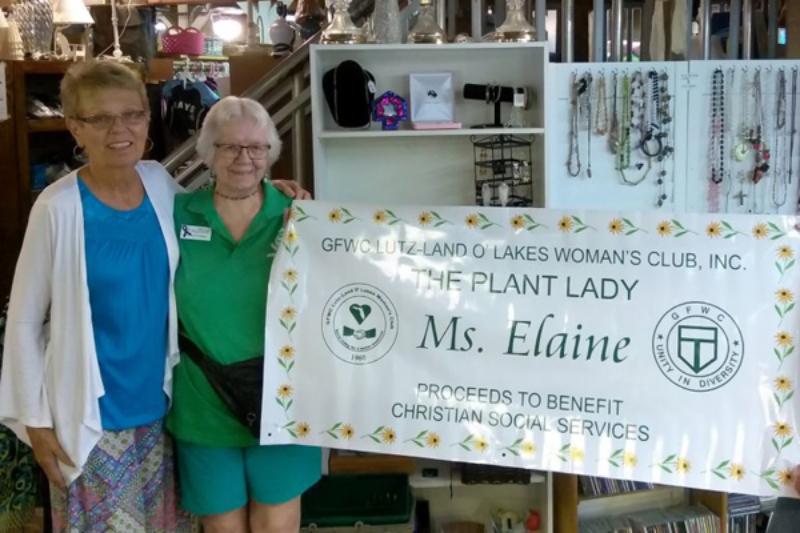 Plant Lady donation